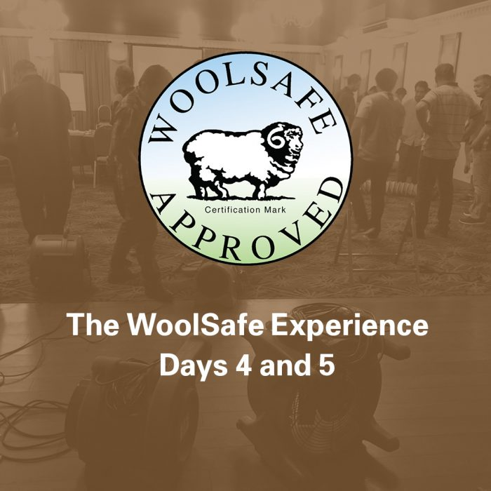 The WoolSafe Experience, Days 4 and 5